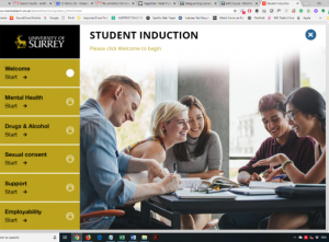 Bespoke-Elearning-Student-Induction