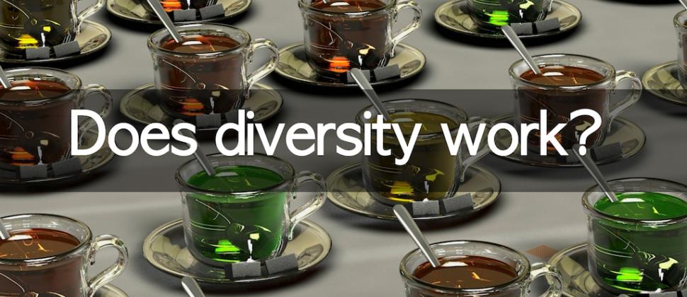 Does diversity work