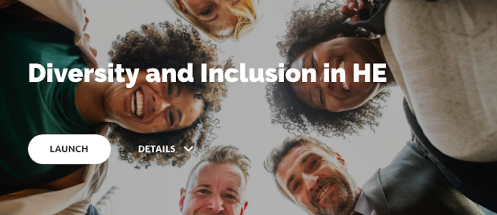 Diversity and Inclusion in Higher Education